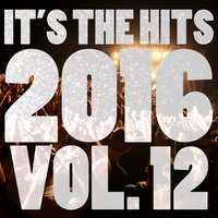 It's The Hits 2016! Vol. 12 — New Tribute Kings