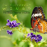 On Butterfly Wings — The Black Feather Intuitive