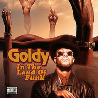 In the Land of Funk — Goldy