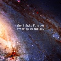 Starfish in the Sky — The Bright Forever