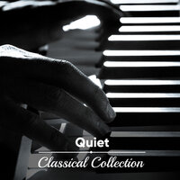 #11 Quiet Classical Collection — Piano Pianissimo, Classical Study Music, Exam Study Classical Music Orchestra, Classical Study Music, Exam Study Classical Music Orchestra, Piano Pianissimo