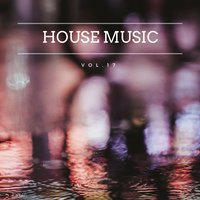 House Music, Vol. 17 — сборник