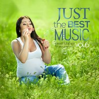 Just the Best Music Vol.6 Sweet Lullabies for Your Pregnancy — сборник