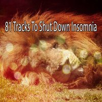 81 Tracks To Shut Down Insomnia — Trouble Sleeping Music Universe