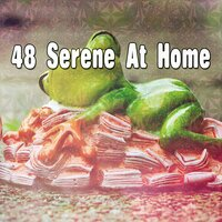 48 Serene at Home — Trouble Sleeping Music Universe