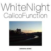 White Night — Calico Function