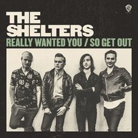 Really Wanted You — The Shelters
