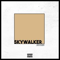 Skywalker — Revlyn