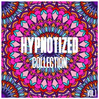 Hypnotized Collection, Vol. 1 - Selection of House Music — сборник