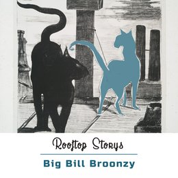 Rooftop Storys — Big Bill Broonzy