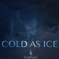 Cold as Ice — Buddhakai