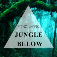 Jungle Below — Etno Work