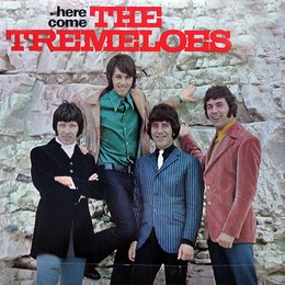 Here come The Tremeloes — The Tremeloes