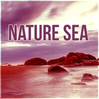 Nature Sea - Music and Pure Nature Sounds for Stress Relief, Mindfulness Meditation Spiritual Healing — Sea Tranquility Academy