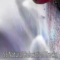 55 Natural Relaxation Tracks — Relajación