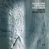 Sun Of Goldfinger — David Torn, Tim Berne, Ches Smith