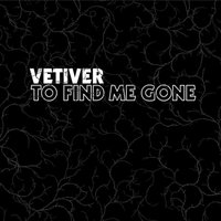 To Find Me Gone — Vetiver