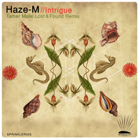 Intrigue — Haze-M