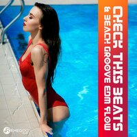 Check This Beats & Beach Groove EDM Flow — сборник