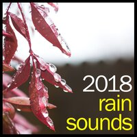 #2018 Spa Music Rain Collection - Thunder and Calming Rain — Sounds of Rain & Thunder Storms, Spa Music Collective, Spa Music Paradise, Spa Music Collective, Spa Music Paradise, Sounds of Rain & Thunder Storms