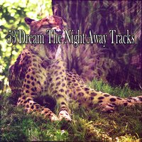 53 Dream The Night Away Tracks — Nature Sound Series