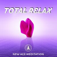 Total Relax – New Age Meditation – Yoga, Reiki, Calmness, Therapy Music, Relaxing Music, Stress Relief, Falling Rain, Pacific — Total Relax Zone