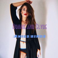 Bonnie and Clyde — anies birds