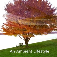 An Ambient Lifestyle — Ambient Forest, Ambient Rain, Ambiente
