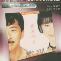 The Best Seller of Warner Music - The Best of Sally & Lam — Sally Yeh, George Lam, Sally Yeh and George Lam