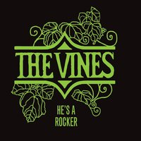 He's a Rocker — The Vines