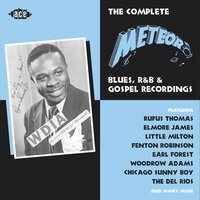 The Complete Meteor Blues, R&B and Gospel Recordings — сборник