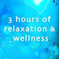 3 Hours of Relaxation and Wellness (For Yoga, Pilates, Massage and Beauty) — Buddha Sun