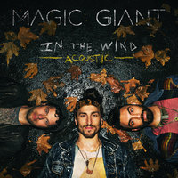 In The Wind — Magic Giant