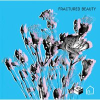 Fractured Beauty — Robert Lord|David McGinnis