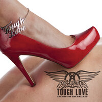 Tough Love: Best Of The Ballads — Aerosmith