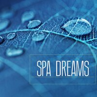 Spa Dreams - Music for Spa Breaks, Wellness Centers and Massage Background Songs — Spa Music Wellness