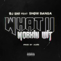 What U Workin' Wit — DJ Sn1