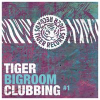 Tiger Bigroom Clubbing, Vol. 1 — сборник