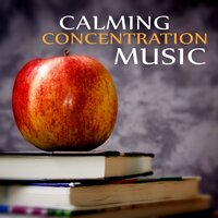 Calming Concentration Music - Instrumental Study Music, Quiet Room for Reading, Calming Music for Reading, Music for Work, Music for the Classroom — Nature Sounds Learning Academy