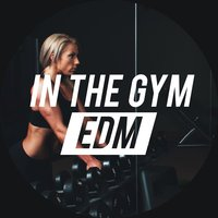 In the Gym - EDM — сборник