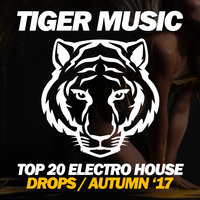 Top 20 Electro House Drops (Autumn '17) — сборник