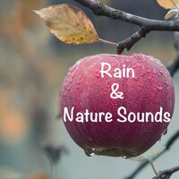 12 Rain and Nature Sounds. Loopable Sounds for Sleeping all Night. Relax with Rain Sounds — Trouble Sleeping Music Universe, Rebirth Yoga Music Academy, Music to Relax in Free Time