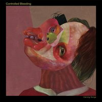 Carving Songs — Controlled Bleeding
