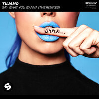 Say What You Wanna — Tujamo