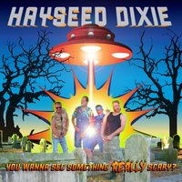 You Wanna See Something Really Scary — Hayseed Dixie