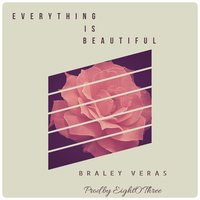 Everything Is Beautiful — Braley Veras