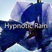 Hypnotic Rain — Rain Sounds & White Noise