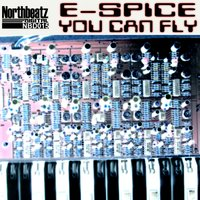 You Can Fly — E-Spice