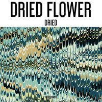 Dried — Dried Flower