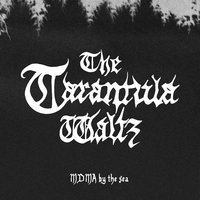 MDMA By the Sea — The Tarantula Waltz